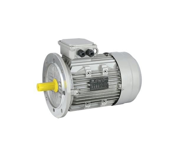 YS系列铝壳高效三相异步电动机